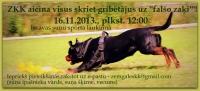 Falšais zaķis, Iecava - 16.11.2013