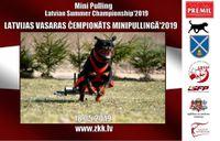 18.05.2019 - LATVIJAS VASARAS ČEMPIONĀTS MINIPŪLINGĀ'2019