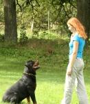 """""""Pozitīvā suņa apmācības metode – klausīt tas ir forši!"""""""